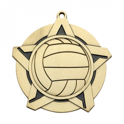 Volleyball Medals image