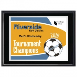 Soccer Plaques image