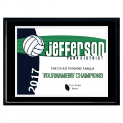 Volleyball Plaques image