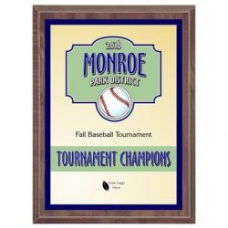 Spartan Baseball Sport Plaque