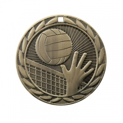 Volleyball Sunburst Medal