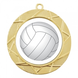 Color Sport Volleyball Medal