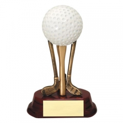 Golf Ball on Clubs Resin