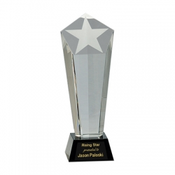 Frosted Star Crystal Tower Award