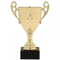 Henry Cup Trophy - Gold