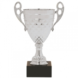 Henry Cup Trophy - Silver